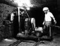 チェーンソー式垣根採掘機-1965年から現在